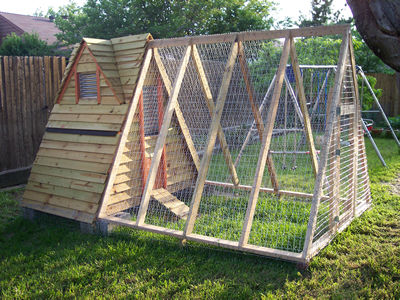 How to make a chicken coop frontpage for Diy movable chicken coop